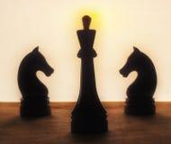 Rei e cavalos da xadrez Imagens de Stock