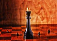 Rei e penhores Imagem de Stock Royalty Free