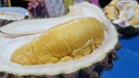 Rei fresco Durian de Musang fotografia de stock