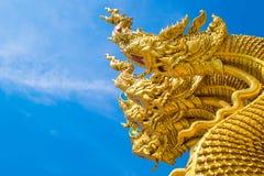 Rei Nagas Imagem de Stock Royalty Free