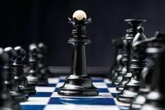 Rei preto imagens de stock royalty free