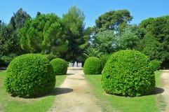 reial barcelona de trädgård palau pedralbes Royaltyfria Bilder