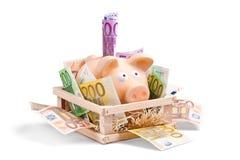 Reiche Piggy Querneigung Stockfoto