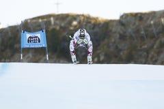 REICHELT Hannes in FIS alpiner Ski World Cup - der SUPER-G der 3. MÄNNER Stockbilder