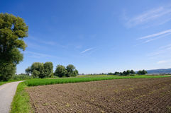 Reichenau, Germany Royalty Free Stock Images
