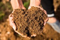 Reicher, fruchtbarer Boden -- Vertrauen in der Zukunft Stockbilder