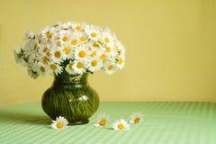 Reicher Gänseblümchenblumenstrauß auf der Tabelle Stockfotografie