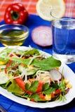 Reicher und gesunder Gemüsesalat stockfotos