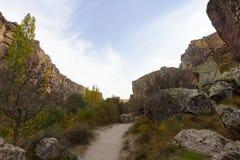 Reicher Wald-IHLARA TAL-Truthahn stockfoto