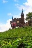 Reichsburg Cochem på floden Moselle fotografering för bildbyråer