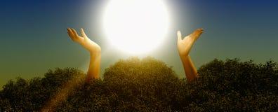 Reichweite für den Sun stockfoto