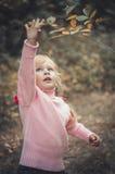 Reichweiten des kleinen Mädchens für einen Baumast Lizenzfreie Stockfotografie