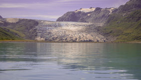 Reid Glacier Image libre de droits