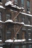 Reif auf alten Backsteinmauern Stockfotografie