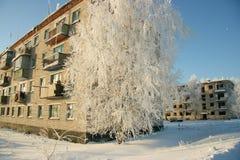 Reif auf Bäumen und verlassenen Häusern Stockbild