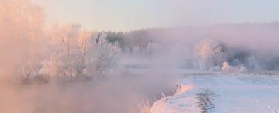 Reif auf Bäumen am Wintermorgen Rosa Sonnenlicht belichtet stockbilder