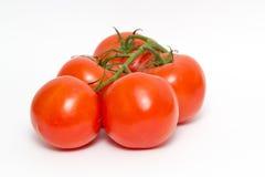 Reif von den großen roten Tomaten Lizenzfreies Stockfoto