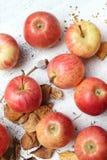 Reife Äpfel auf Weiß gemaltem Hintergrund Stockbild