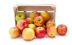 Reife Äpfel in der hölzernen Kiste Lizenzfreies Stockfoto