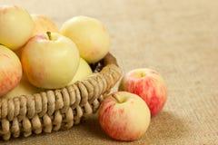 Reife Äpfel in einem schönen Weidenkorb Stockfotografie