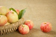 Reife Äpfel in einem schönen Weidenkorb Stockfoto