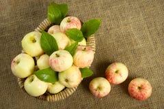 Reife Äpfel in einem schönen Weidenkorb Lizenzfreie Stockfotos