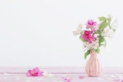 Reife Äpfel und Niederlassungen im Vase auf Weiß Lizenzfreie Stockfotos
