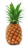 Reife Ananas