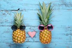 Reife Ananas stockbilder