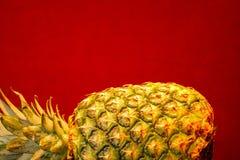 Reife Ananas auf seiner Seite Lizenzfreie Stockfotografie