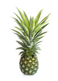 Reife Ananas auf weißem Hintergrund Stockbilder