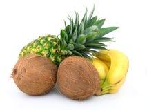 Reife Ananas, Bündel Bananen und Kokosnuss Lizenzfreie Stockfotografie