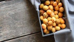 Reife Aprikosen in der Holzkiste sehr viele Fleischmehlklöße stock video footage