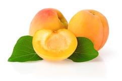 Reife Aprikosen mit Blättern Lizenzfreie Stockfotos