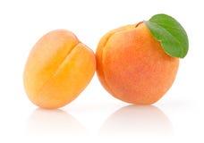 Reife Aprikosen mit Blatt Lizenzfreies Stockbild