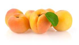 Reife Aprikosen mit Blatt Stockfoto