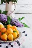 Reife Aprikosen und lila Blumen Lizenzfreies Stockfoto