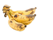 Reife Bananen in lokalisiertem Hintergrund Lizenzfreie Stockbilder