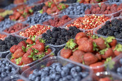 Reife Beeren in einem Plastikbehälter Stockbilder
