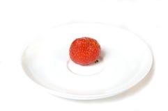 Reife einzelne Erdbeere   Stockfoto