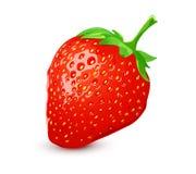 Reife Erdbeere Lizenzfreies Stockfoto