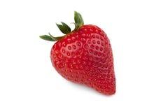 Reife Erdbeere Lizenzfreie Stockbilder
