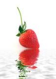 Reife Erdbeere auf weißem Hintergrund Lizenzfreies Stockfoto