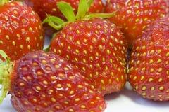Reife Erdbeere im weißen Hintergrund Lizenzfreies Stockbild