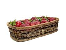 Reife Erdbeeren Lizenzfreies Stockfoto