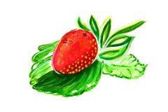 Reife Erdbeeren Lizenzfreies Stockbild