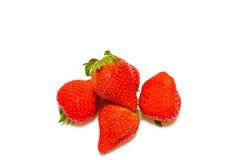 Reife Erdbeeren Stockbilder