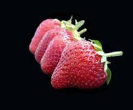Reife Erdbeeren auf schwarzem Hintergrund Stockfotografie