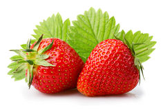Reife Erdbeeren mit den Blättern lokalisiert auf einem Weiß Lizenzfreie Stockfotografie
