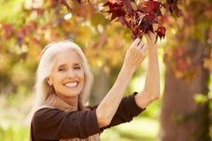 Reife Frau, die in Autumn Landscape sich entspannt stockfoto